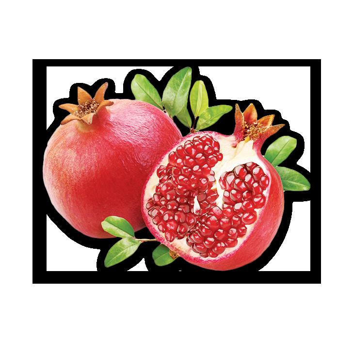 05_frutta